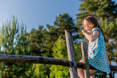 Κορίτσι στο fance Στοκ Εικόνα