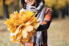Κορίτσι φθινοπώρου που περπατά στο πάρκο πόλεων Πορτρέτο της ευτυχούς καλής και όμορφης νέας γυναίκας στο δάσος στα χρώματα πτώση Στοκ φωτογραφίες με δικαίωμα ελεύθερης χρήσης