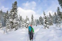 Κορίτσι backpacker που περπατά σε έναν δασικό δρόμο στο χειμερινό δάσος μέσα Στοκ εικόνα με δικαίωμα ελεύθερης χρήσης