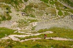 Κορίτσι backpacker serpentines πορειών πεζοπορίας, βουνά της Αυστρίας, Άλπεις στοκ φωτογραφία