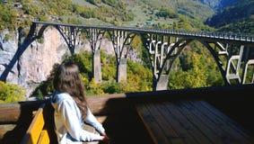 Κορίτσι Brunette με τη μακρυμάλλη συνεδρίαση στον πίνακα και την απόλαυση της θέας της γέφυρας Durdevica Tara γεφυρών στο Μαυροβο Στοκ Εικόνες