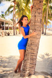 κορίτσι brunette στον μπλε ξυπόλυτο φοίνικα αφών ενάντια στη σειρά φοινικών Στοκ Εικόνες