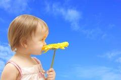 κορίτσι gerbera κίτρινο Στοκ εικόνα με δικαίωμα ελεύθερης χρήσης