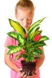κορίτσι houseplant Στοκ Εικόνες