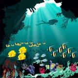 Κοραλλιογενής ύφαλος με τα διάφορα είδη ψαριών και τη σκιαγραφία του δύτη πέρα από το μπλε υπόβαθρο θάλασσας Στοκ Φωτογραφίες