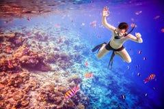 Κοραλλιογενής ύφαλος των Μαλδίβες Ινδικός Ωκεανός Snorkeler Στοκ Φωτογραφία
