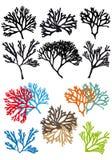 Κοραλλιογενείς ύφαλοι, σύνολο διανυσματική απεικόνιση