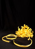 κορδέλλα κίτρινη στοκ εικόνες με δικαίωμα ελεύθερης χρήσης