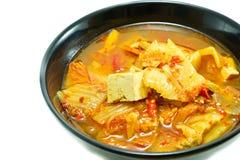 Κορεατικά τρόφιμα, stew kimchi στοκ εικόνες με δικαίωμα ελεύθερης χρήσης