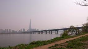 Κορεατικό σκυλί περιπάτων ατόμων στο πάρκο κατά μήκος του ποταμού Han, πανόραμα της Σεούλ απόθεμα βίντεο