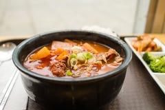 Κορεατικό stew βόειου κρέατος Στοκ Εικόνα
