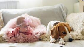 Κοριτσάκι με ένα σκυλί λαγωνικών στοκ εικόνα