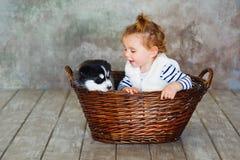 Κοριτσάκι με το γεροδεμένο κουτάβι Στοκ εικόνα με δικαίωμα ελεύθερης χρήσης