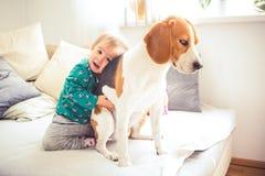 Κοριτσάκι που αγκαλιάζει ένα σκυλί λαγωνικών σε έναν καναπέ σε ένα φωτ στοκ εικόνες