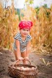 Κοριτσάκι στον κήπο με τη συγκομιδή των πατατών στο καλάθι κοντά στο ξηρό υπόβαθρο καλαμποκιού τομέων Βρώμικο παιδί στο κόκκινο Στοκ εικόνες με δικαίωμα ελεύθερης χρήσης