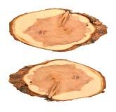 Κορμός δέντρων δαχτυλιδιών απεικόνιση αποθεμάτων