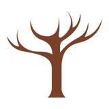 Κορμός δέντρων με τα branchs χωρίς κινηματογράφηση σε πρώτο πλάνο φύλλων ελεύθερη απεικόνιση δικαιώματος