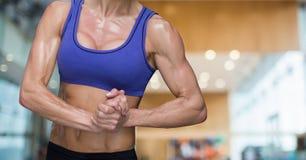 Κορμός γυναικών ικανότητας που κάνει τις ασκήσεις σε μια γυμναστική απεικόνιση αποθεμάτων