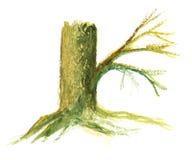 Κορμός δέντρων με τις ρίζες ελεύθερη απεικόνιση δικαιώματος