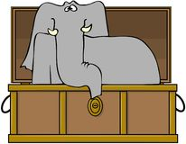 κορμός ελεφάντων απεικόνιση αποθεμάτων