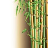 Κορμός μπαμπού με το σχέδιο φύλλων ελεύθερη απεικόνιση δικαιώματος