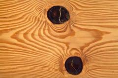 κορμός πεύκων Στοκ Εικόνα