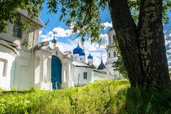 Κορμός του παλαιού δέντρου σημύδων στο μέτωπο των τοίχων πετρών του ιερού μοναστηριού Bogolyubovo, περιοχή του Βλαντιμίρ Στοκ εικόνες με δικαίωμα ελεύθερης χρήσης