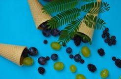 Κορνέτα παγωτού με τα φρούτα μούρων στο μπλε υπόβαθρο στοκ εικόνες