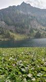 κορσικανικά βουνά βουνών λιμνών λάκκας creno de Γαλλία της Κορσικής Στοκ Εικόνα
