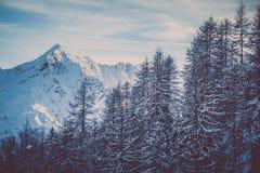 Κορυφή βουνών το χειμώνα Στοκ Εικόνες