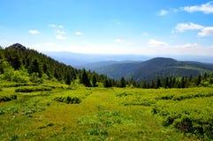 Κορυφή του βουνού Grosser Arber, Γερμανία Στοκ Φωτογραφία