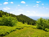 Κορυφή του βουνού Grosser Arber, Γερμανία Στοκ φωτογραφία με δικαίωμα ελεύθερης χρήσης