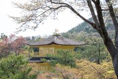 Κορυφή του ναού Kinkakuji, το χρυσό περίπτερο Στοκ Εικόνες