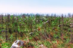 Κορυφή του υποστηρίγματος Vottovaara Στοκ φωτογραφίες με δικαίωμα ελεύθερης χρήσης