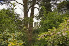 Κορυφή του Castle μέσω των δέντρων Στοκ Εικόνες