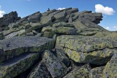 κορυφαίος κόσμος 4 Στοκ Εικόνες