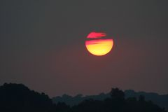 κορυφαίο δέντρο ηλιοβα&sig στοκ εικόνα