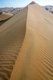 Κορυφογραμμή αμμόλοφων άμμου Στοκ εικόνες με δικαίωμα ελεύθερης χρήσης