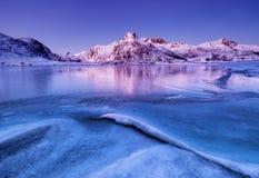 Κορυφογραμμή και αντανάκλαση βουνών στην επιφάνεια λιμνών Φυσικό τοπίο στα νησιά Lofoten, Νορβηγία στοκ φωτογραφίες με δικαίωμα ελεύθερης χρήσης