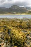 κορυφογραμμή Σκωτία νησιών skye trotternish Στοκ Φωτογραφίες