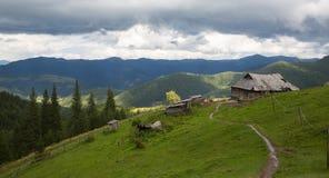 Κορυφογραμμή Marmarosy Στοκ Φωτογραφίες