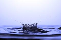 κορώνα Στοκ Εικόνα
