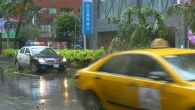 Κορδόνι αστυνομίας από την πεσμένη περιοχή δέντρων στον τυφώνα φιλμ μικρού μήκους