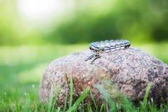 Κοσμήματα βραχιολιών Στοκ Φωτογραφίες