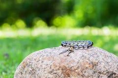 Κοσμήματα βραχιολιών Στοκ εικόνες με δικαίωμα ελεύθερης χρήσης