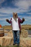 κοστούμι αποκριές werewolf Στοκ εικόνα με δικαίωμα ελεύθερης χρήσης