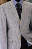 κοστούμι Στοκ εικόνα με δικαίωμα ελεύθερης χρήσης