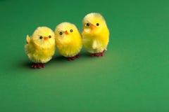 κοτόπουλα αστεία Στοκ Εικόνα