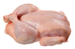 κοτόπουλο ακατέργαστο Στοκ εικόνα με δικαίωμα ελεύθερης χρήσης