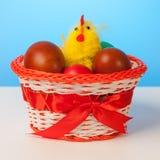Κοτόπουλο και αυγά Πάσχας σε ένα εορταστικό καλάθι Στοκ Φωτογραφία